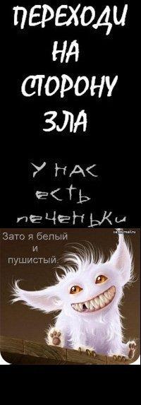 Вован Петров, 4 октября 1995, Орел, id93462896