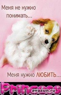 Гала Мезенцева, 27 ноября 1996, Киров, id81639333