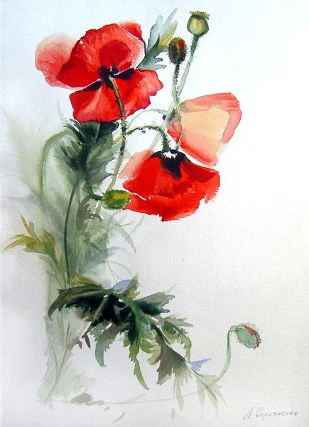 Лидия Агаева