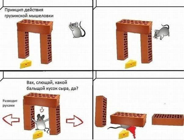 http://cs9615.vkontakte.ru/u22202161/135348375/x_b17b3151.jpg