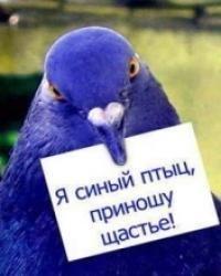 Delete Delete, 5 июня 1995, Москва, id38133671