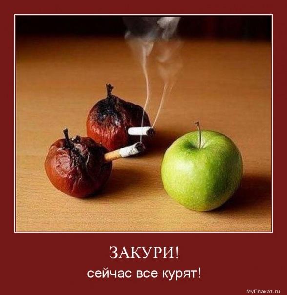 ЗОЖ X_5dadbfa7