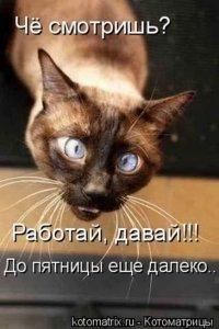 Валерий Мозговой, 21 августа , Новокузнецк, id54521552