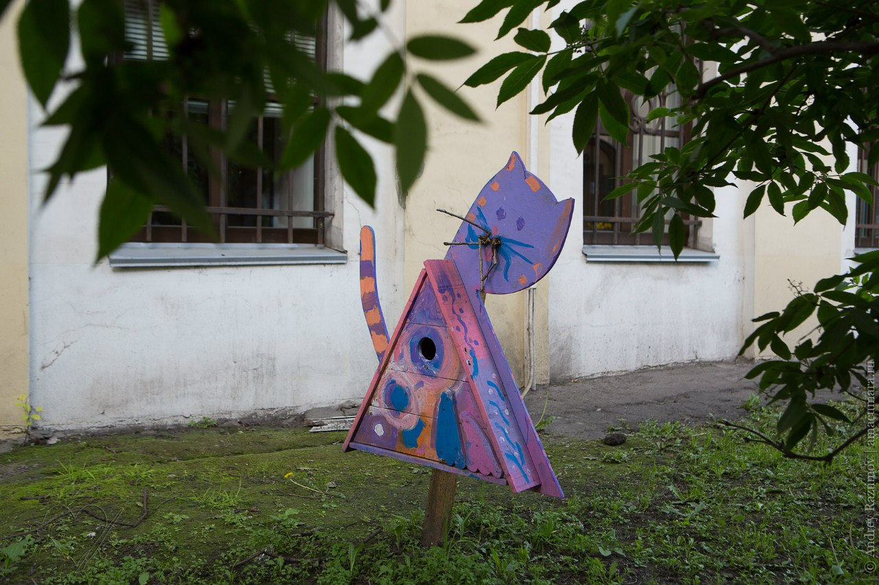 Скворечники в Санкт-Петербурге
