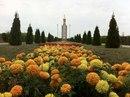 Молодежный-Совет-На-Общественных При-Главе-Города-Краснодар фото #4