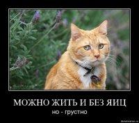 Кудар Кудвв, 27 июля , Днепропетровск, id82745235