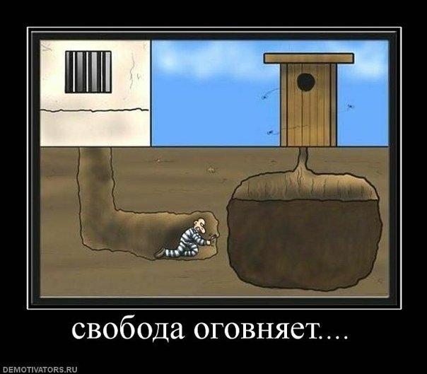http://cs9645.vkontakte.ru/u36724697/112221452/x_1b2b7d25.jpg