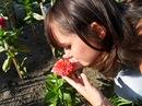 Алиса Дмитриева. Фото №3
