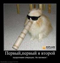 Татьяна Сашина, id119242100