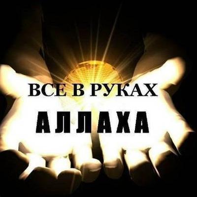 Шырхан Мередов, 7 сентября 1996, Нижний Тагил, id135891695