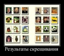 Alexey Biryukov фото #41