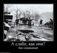 Rthhtrth Rhthht, 6 января 1988, Ялуторовск, id73516121