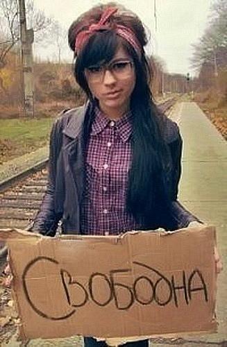 Котов, картинки с надписью свободна девушки