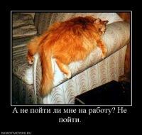 Ёся Синоватенков, 25 января , Онега, id76929030