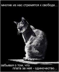 Red Cat, 7 июля 1991, Москва, id59036507