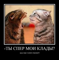 Anton !!!!!, Киев, id117186127