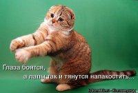 Артур Пирожков, 5 июня 1991, Москва, id90493166