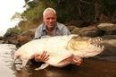рыбы амазонки фото.