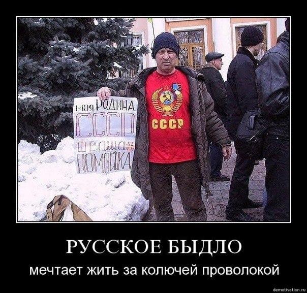Коморовский: Брюссель ошибся в оценке проблемы в отношениях между ЕС и Украиной - Цензор.НЕТ 1512