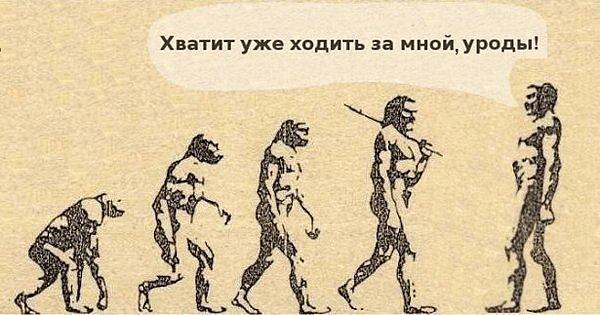 http://cs9674.vkontakte.ru/u15190089/112763476/x_140f342c.jpg