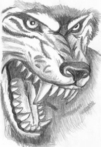 Волк(Кейл)-Wolf Нидо, 6 декабря , Москва, id58598364