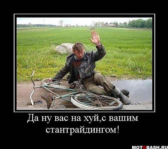 http://cs9676.vk.me/u7666799/-6/x_acd43211.jpg