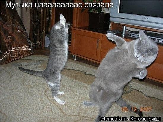 http://cs9678.vkontakte.ru/u33414013/106734366/x_c50d26d5.jpg