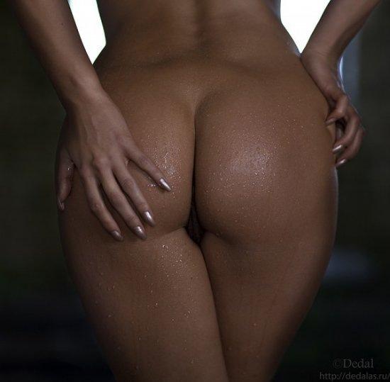 фото красивые женские жопы