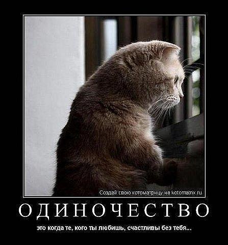 http://cs9695.vkontakte.ru/u16920598/42166413/x_1516225a.jpg