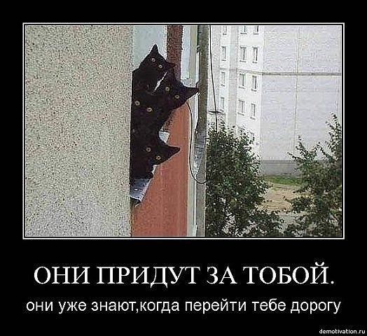 http://cs9695.vkontakte.ru/u16920598/42166413/x_35580984.jpg