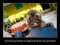 Dmitriy Msu, 4 февраля , Москва, id81368156