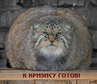 Дмитрий Ленин, 13 апреля , Москва, id52947213