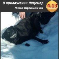Оливия Стар, 11 декабря , Полтава, id43025653