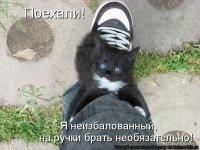 Илиза Симхаева, 29 января , Железногорск, id56905156
