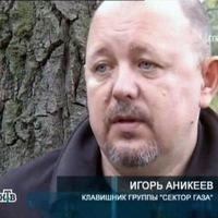 Игорь Аникеев фото