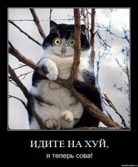 Дима Зуев, 29 сентября , Самара, id168836003