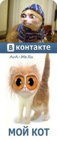 Аватар для Calabr!a.
