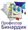 """Детская развивающая  игра """"Профессор Бинардик"""""""