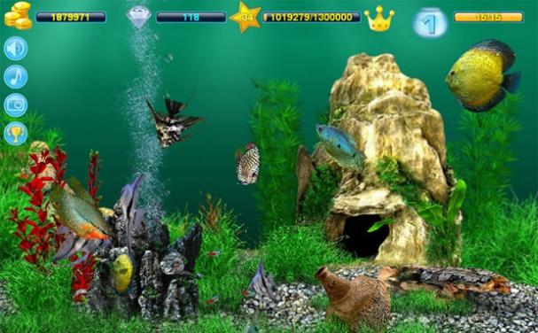 Скачать игру аквамир 3d аквариум на компьютер