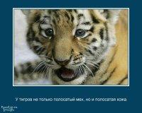 Катя Перепелица, 5 января , Харьков, id61884424