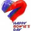 HAPPY BOWIE'S DAY 65! 8 января 2012, клуб Money Honey