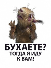 Александр Романенко, Новосибирск, id68428948