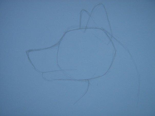 Урок: Рисуем волка. Секрет рисования шерсти.Простенький урок X_43ebee3f