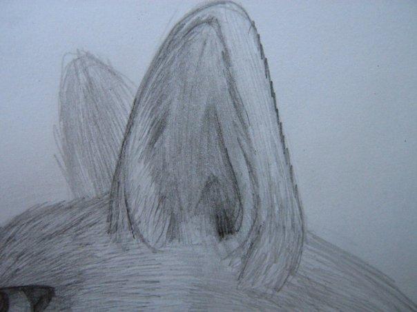 Урок: Рисуем волка. Секрет рисования шерсти.Простенький урок X_885d239e