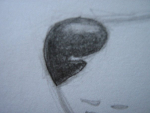 Урок: Рисуем волка. Секрет рисования шерсти.Простенький урок X_cdd2dcde