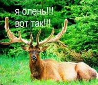 Артём Колчин, 29 ноября , Москва, id69683810