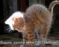 Marina Tereshenko, 15 июня 1987, id44358142