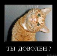 Кис Кис, 6 апреля , Омск, id70945143