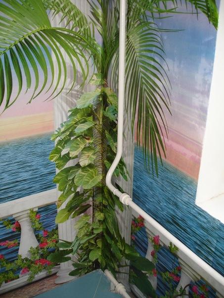 фотообои на холодильник: