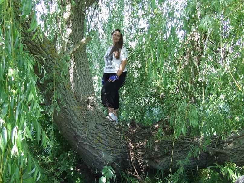 http://cs9741.vkontakte.ru/u85767772/136049404/y_e451be14.jpg